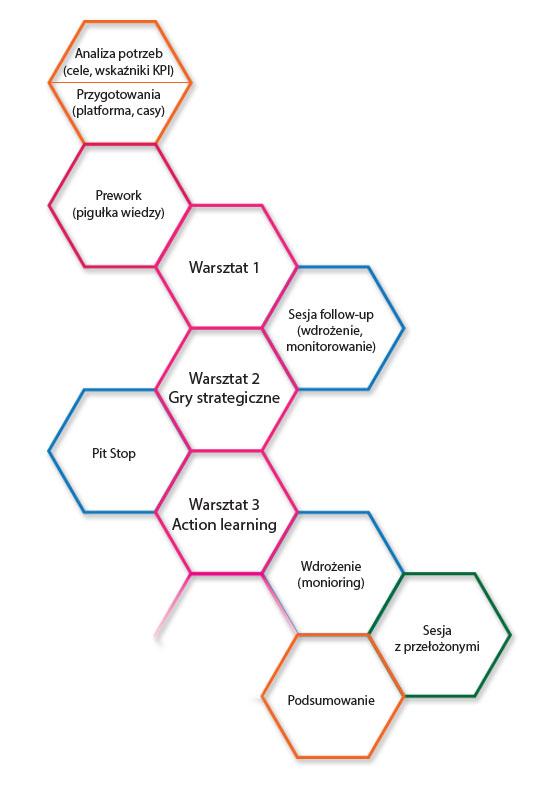 Schemat programu rozwojowego